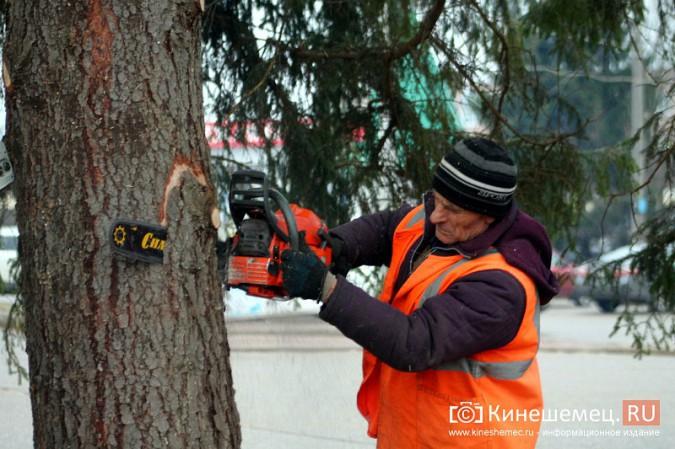 В Кинешму привезли главную новогоднюю елку фото 29