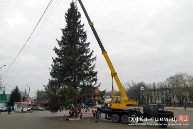 В Кинешму привезли главную новогоднюю елку фото 33