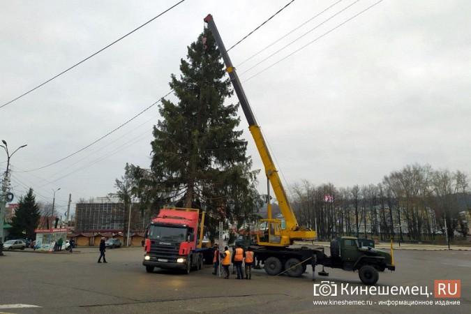 В Кинешму привезли главную новогоднюю елку фото 17