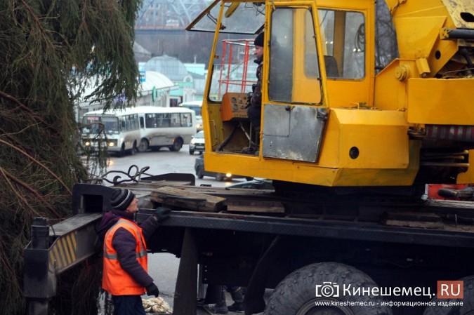 В Кинешму привезли главную новогоднюю елку фото 13