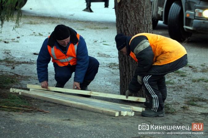 В Кинешму привезли главную новогоднюю елку фото 26