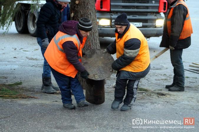В Кинешму привезли главную новогоднюю елку фото 23