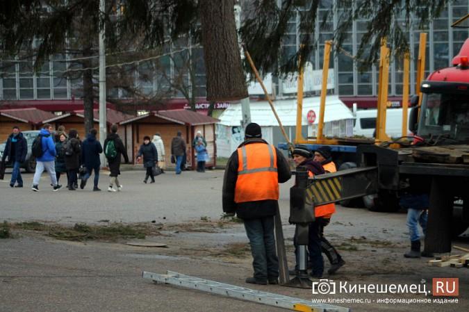 В Кинешму привезли главную новогоднюю елку фото 20
