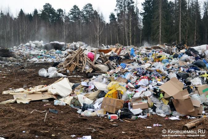 В Кинешме намерены до 2023 года разрешить многолетние экологические проблемы фото 3