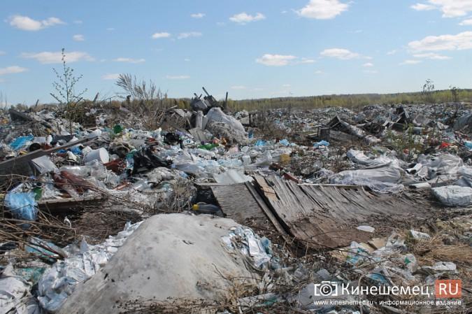 В Кинешме намерены до 2023 года разрешить многолетние экологические проблемы фото 4