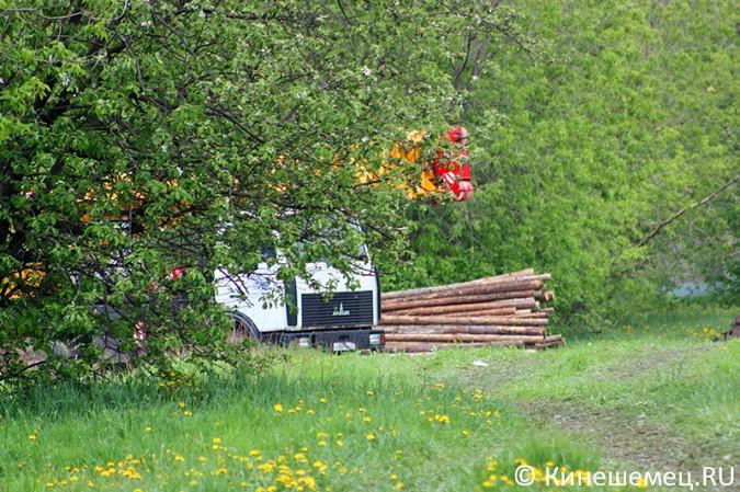 На «лесозаводском поле» в Кинешме началось строительство торгового центра фото 4