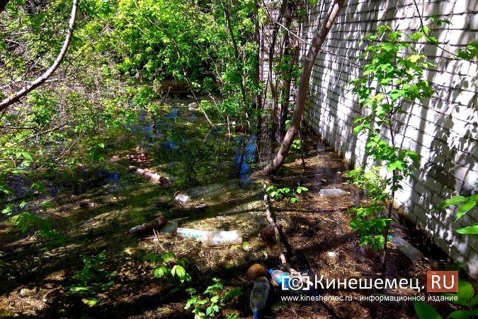 Территория рядом с Никольским мостом уходит под воду фото 14