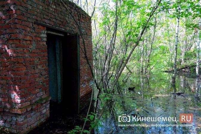Территория рядом с Никольским мостом уходит под воду фото 3