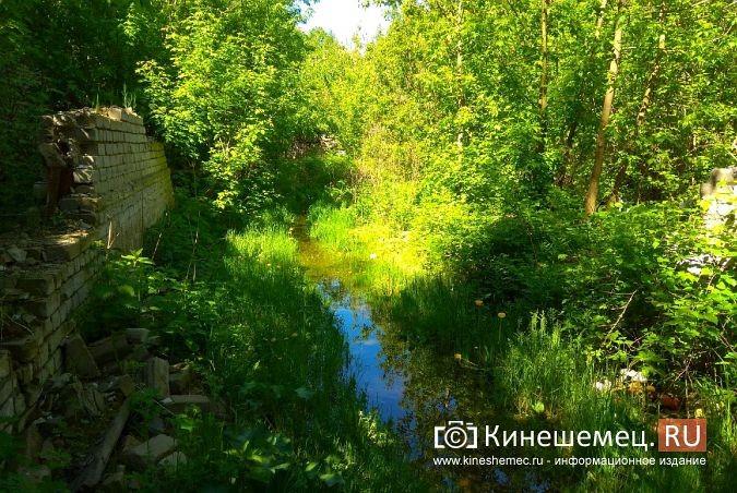 Территория рядом с Никольским мостом уходит под воду фото 2