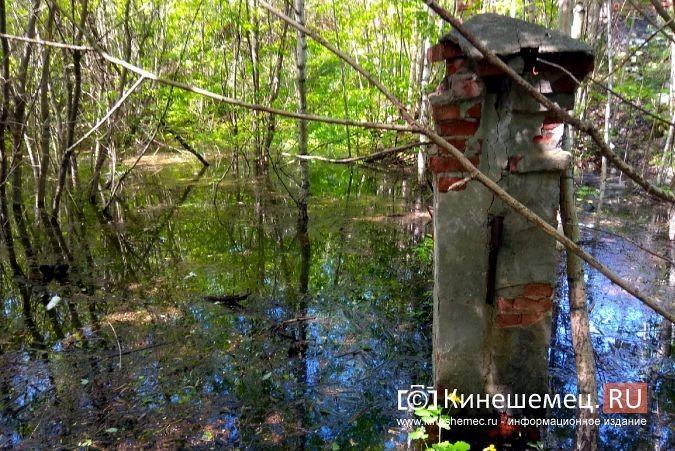 Территория рядом с Никольским мостом уходит под воду фото 6