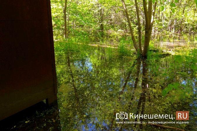 Территория рядом с Никольским мостом уходит под воду фото 8