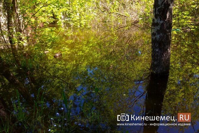 Территория рядом с Никольским мостом уходит под воду фото 9
