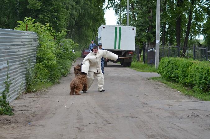 Почти 200 сотрудников УФСИН охраняют кинешемские колонии фото 3
