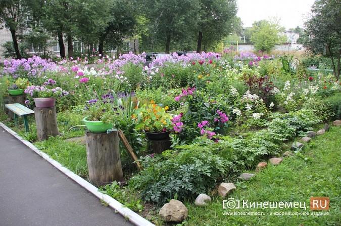 У пятиэтажки на улице Воеводы Боборыкина жители вырастили шикарный цветник фото 15