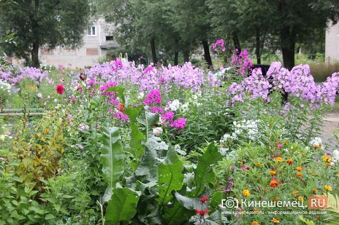 У пятиэтажки на улице Воеводы Боборыкина жители вырастили шикарный цветник фото 22