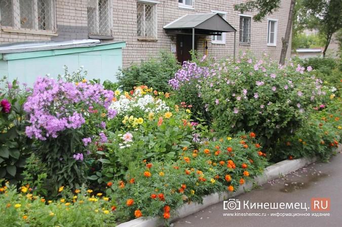 У пятиэтажки на улице Воеводы Боборыкина жители вырастили шикарный цветник фото 18