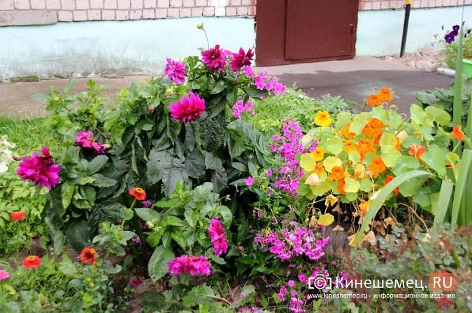 У пятиэтажки на улице Воеводы Боборыкина жители вырастили шикарный цветник фото 11