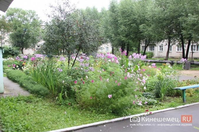 У пятиэтажки на улице Воеводы Боборыкина жители вырастили шикарный цветник фото 21