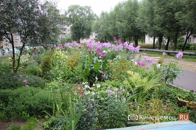 У пятиэтажки на улице Воеводы Боборыкина жители вырастили шикарный цветник фото 19
