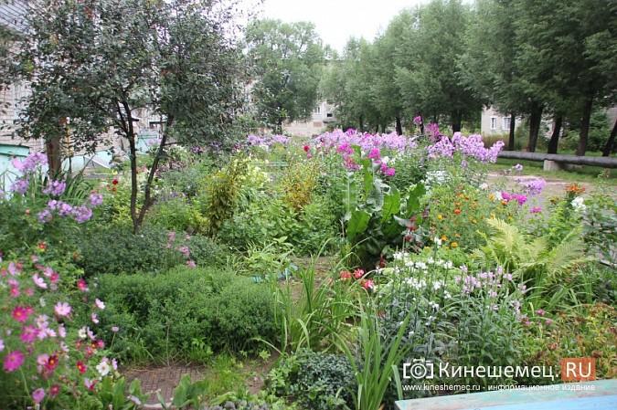 У пятиэтажки на улице Воеводы Боборыкина жители вырастили шикарный цветник фото 23