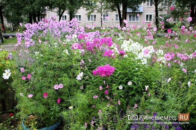 У пятиэтажки на улице Воеводы Боборыкина жители вырастили шикарный цветник фото 13