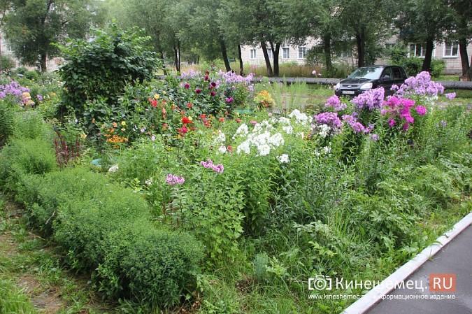 У пятиэтажки на улице Воеводы Боборыкина жители вырастили шикарный цветник фото 16
