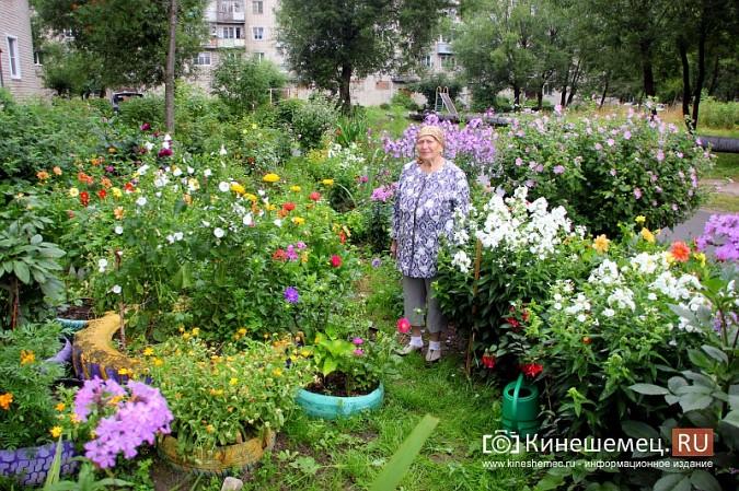 У пятиэтажки на улице Воеводы Боборыкина жители вырастили шикарный цветник фото 2