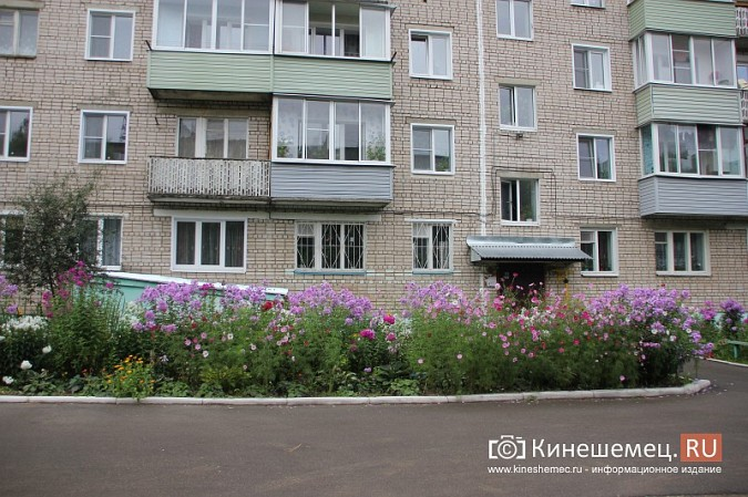 У пятиэтажки на улице Воеводы Боборыкина жители вырастили шикарный цветник фото 24