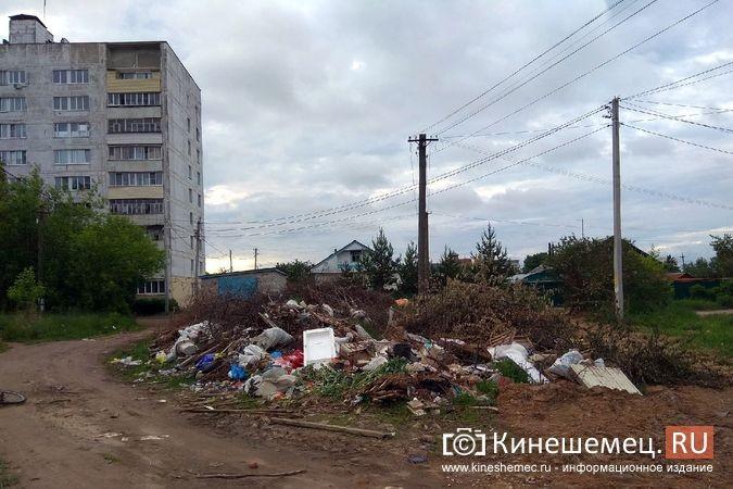 У девятиэтажки по ул.Бойцова выросла огромная несанкционированная свалка фото 7