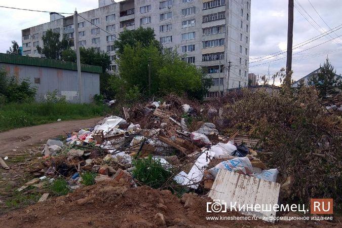 У девятиэтажки по ул.Бойцова выросла огромная несанкционированная свалка фото 3