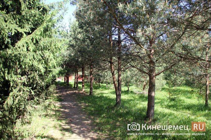 Администрация прокомментировала будущую застройку «зеленой зоны» у Ванцетти, 44 фото 4