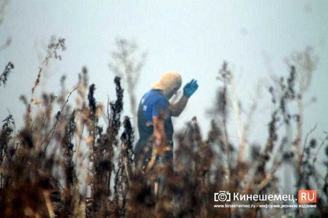 В Кинешме экологическая беда - горят тонны мусора на городской свалке в «Сокольниках» фото 8