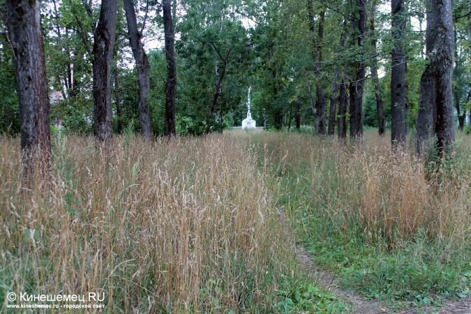 Память о погибших кинешемцах заросла травой фото 10