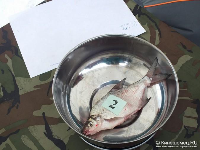 Соревнования по зимней ловле рыбы на мормышку прошли в Кинешме фото 45