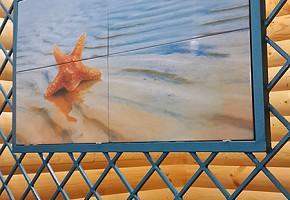 Новая сауна на ДХЗ с Большим Бассейном фото 11
