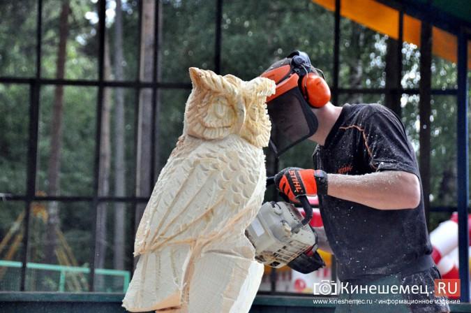 Лучшие скульпторы России по дереву приедут в Кинешму на  День Волжского бульвара фото 2