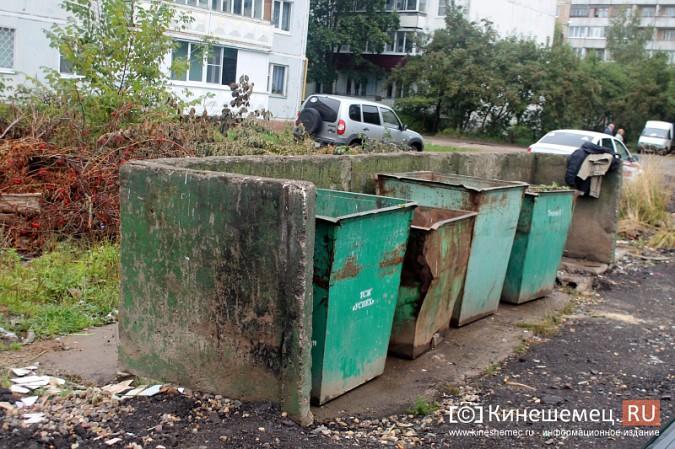 Два года жители добиваются обустройства контейнерной площадки на улице Воеводы Боборыкина фото 10