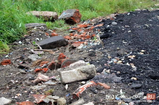 Два года жители добиваются обустройства контейнерной площадки на улице Воеводы Боборыкина фото 11