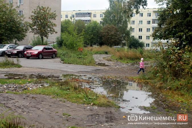 Два года жители добиваются обустройства контейнерной площадки на улице Воеводы Боборыкина фото 9