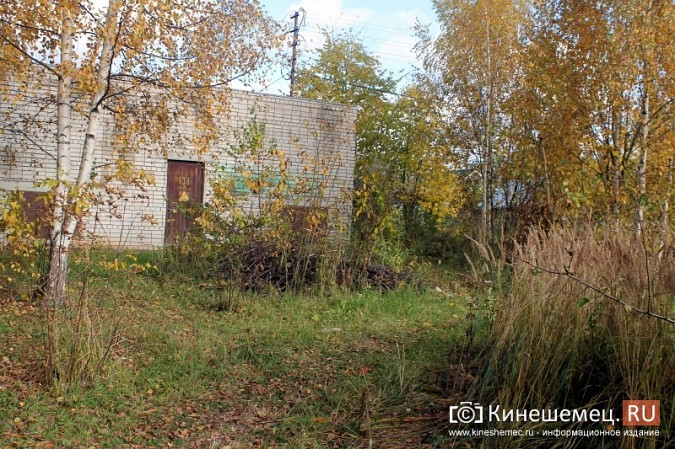 В микрорайоне «Лесозавод» нет свободной земли для пешеходов фото 5