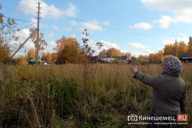 В микрорайоне «Лесозавод» нет свободной земли для пешеходов фото 6