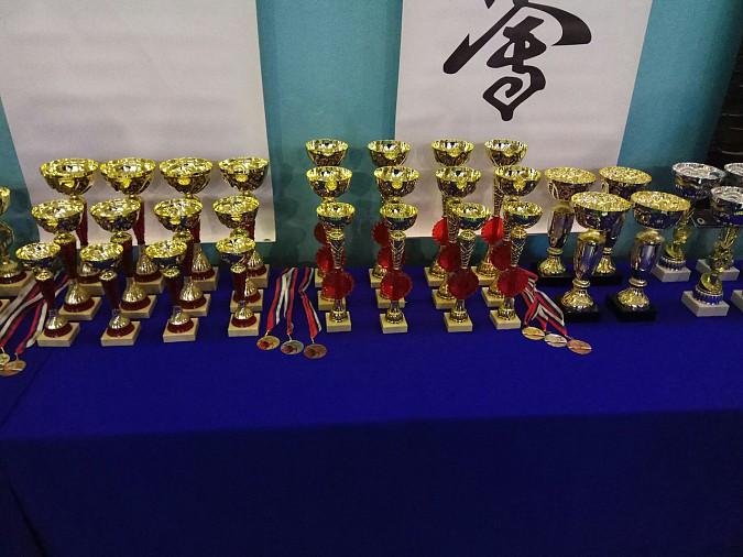 Кинешемские каратисты завоевали шесть кубков фото 12