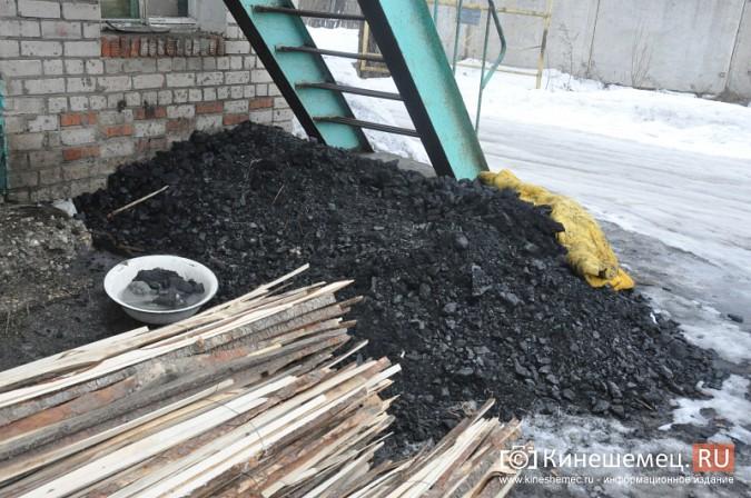 Кинешемские единороссы помогли углем приюту бездомных животных фото 7
