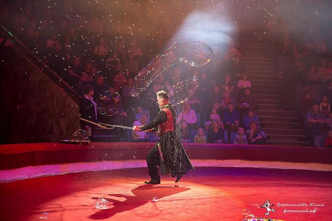 Самая ожидаемая программа сезона  в Ивановском цирке фото 6