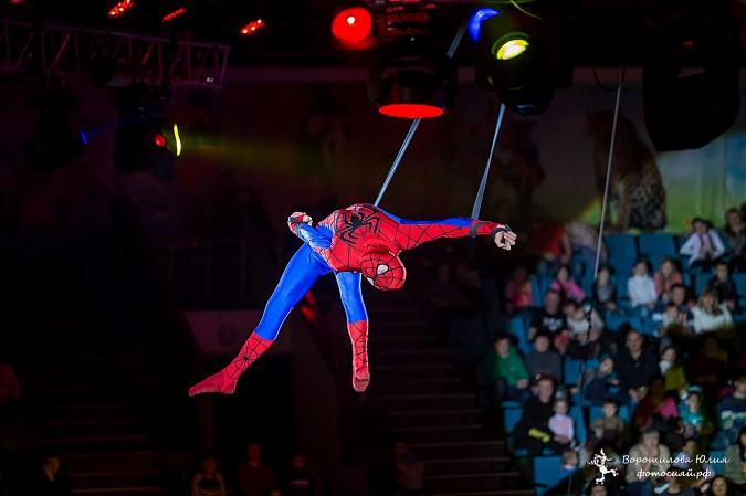 Самая ожидаемая программа сезона  в Ивановском цирке фото 4