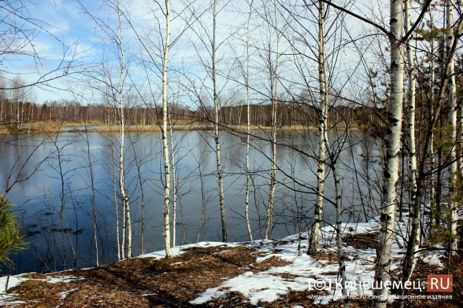 На проект ликвидации пруда с ядовитыми отходами в Кинешме направят 900 тысяч рублей фото 2