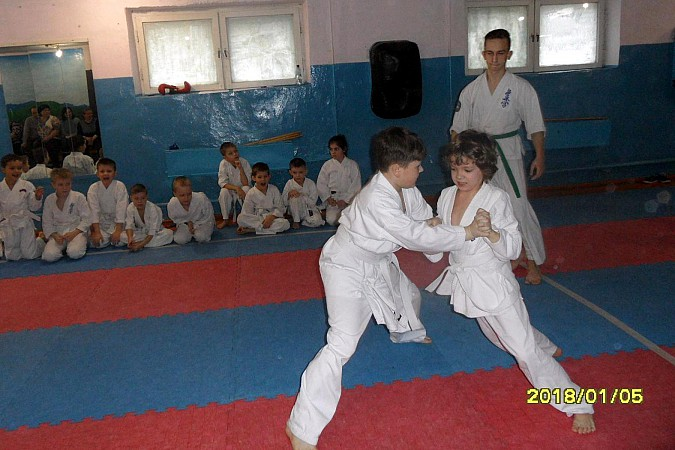 В Кинешме прошли соревнования по сумо фото 6