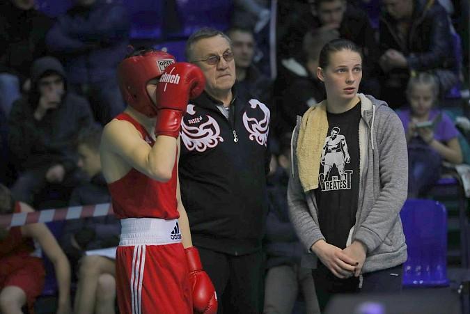 Кинешемские боксеры стали призерами первенства области