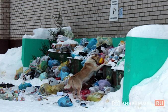 Снег парализовал вывоз мусора в Кинешме фото 5