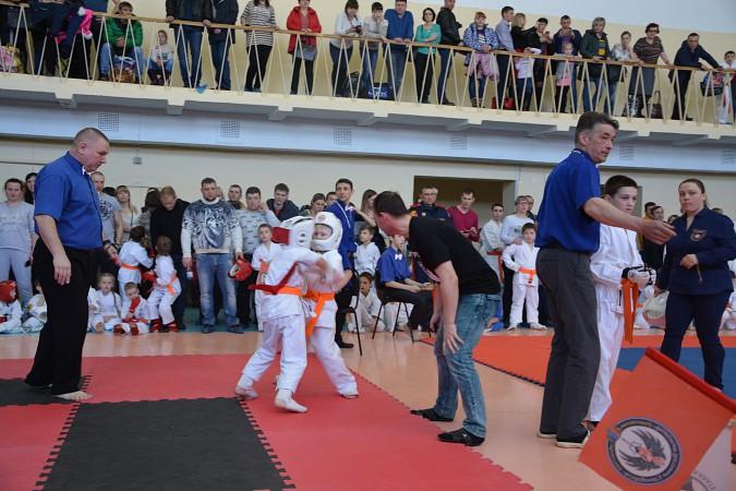 Кинешемский каратист признан лучшим бойцом областного первенства фото 5